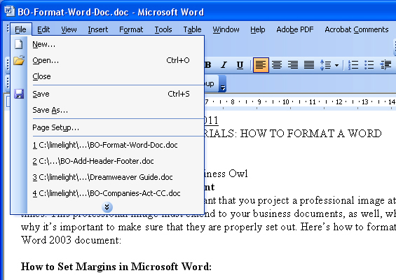 How to set margins in MS Word